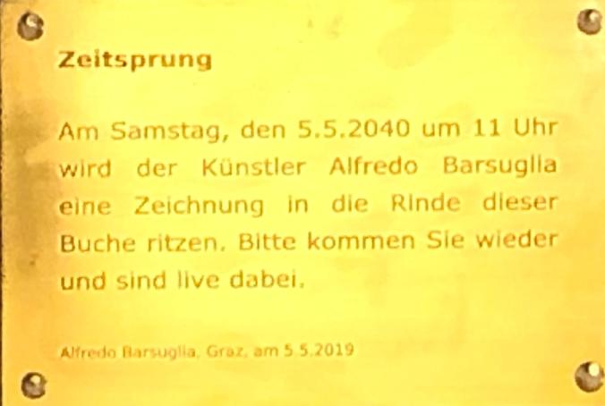 Zeitsprung/ Time Jump, 2019 - 2040 by Alfredo Barsuglia